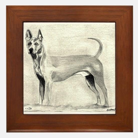 Thai Ridgeback Dog Framed Tile