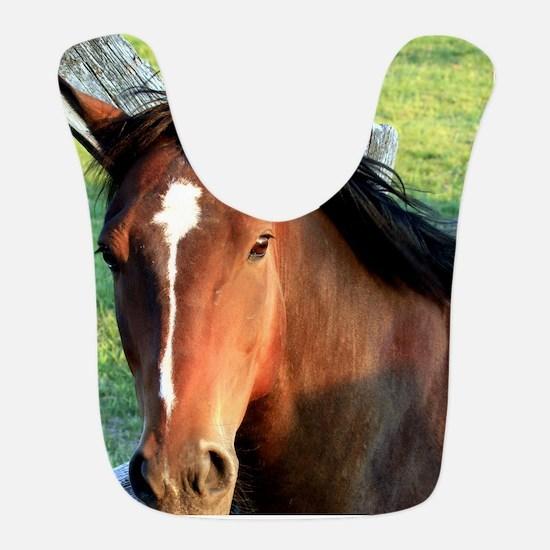 horse , 10x10 2 Bib