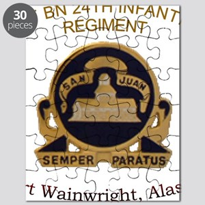 1st bn 24th INF Puzzle