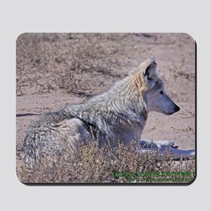 mexican-wolf Mousepad