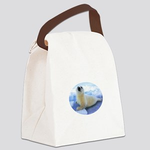 Didnt_Fit_8x8_white Canvas Lunch Bag