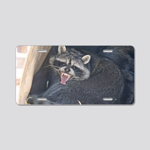 raccoon-yawn Aluminum License Plate