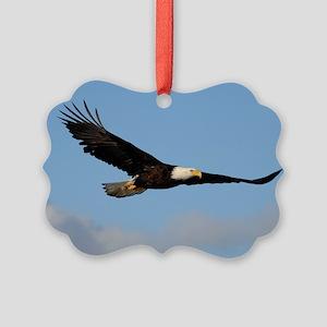 x14  1w Picture Ornament