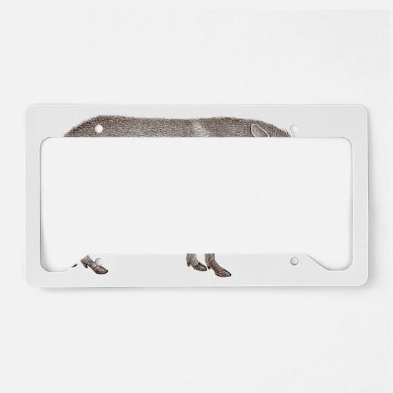 Peccary Pig - Javelina License Plate Holder