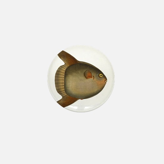 Mola Mola Giant Sunfish Mini Button