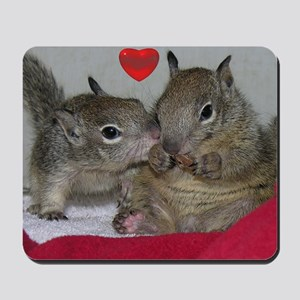 Valentine Squirrels Mousepad