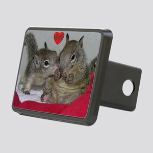 Valentine Squirrels Rectangular Hitch Cover