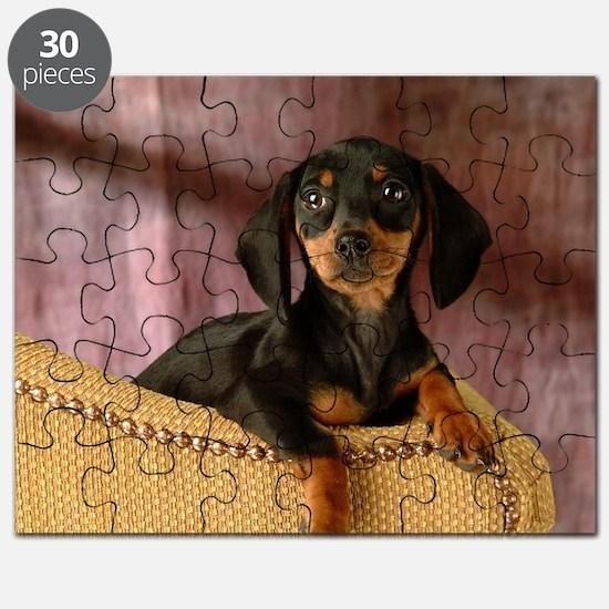 blak red puppy16x16 Puzzle