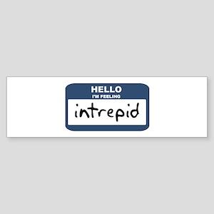 Feeling intrepid Bumper Sticker