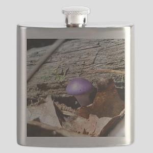 Mushrooms2 Flask