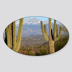 Desert View 2010 Sticker (Oval)