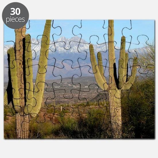Desert View 2010 Puzzle