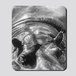 hippo picture  Mousepad