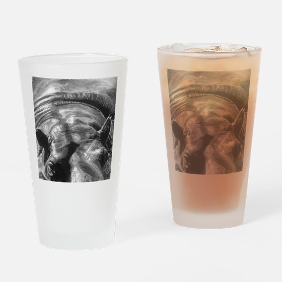 hippo picture  Drinking Glass