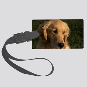 (2) golden retriever head shot Large Luggage Tag