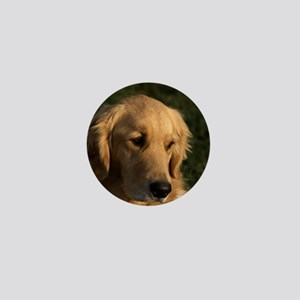 (15) golden retriever head shot Mini Button