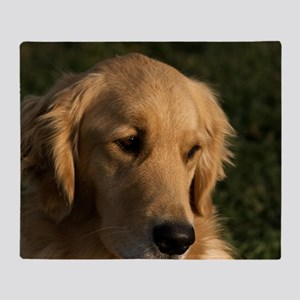 (15) golden retriever head shot Throw Blanket