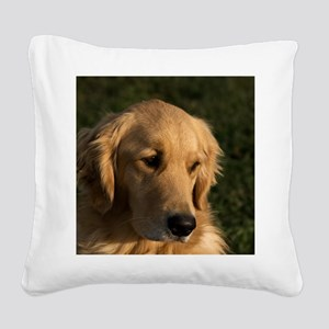 (15) golden retriever head sh Square Canvas Pillow