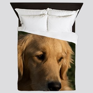 (15) golden retriever head shot Queen Duvet