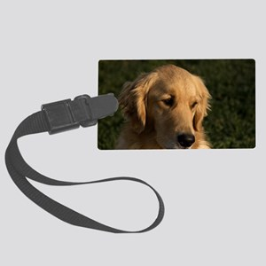 (10) golden retriever head shot Large Luggage Tag