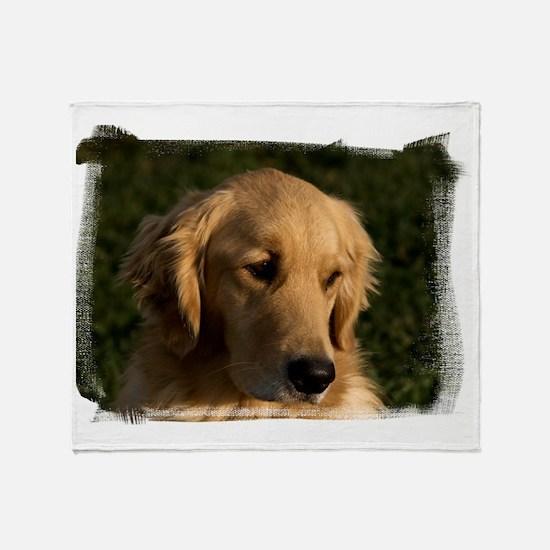(16) golden retriever head shot Throw Blanket