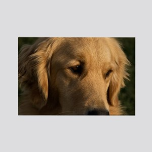 (15s) golden retriever head shot Rectangle Magnet