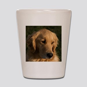 (15s) golden retriever head shot Shot Glass