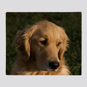 (14) golden retriever head shot Throw Blanket