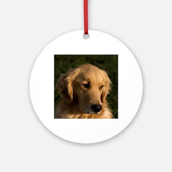 (14) golden retriever head shot Round Ornament