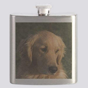 (14) golden retriever head shot Flask