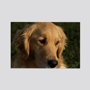 (12) golden retriever head shot Rectangle Magnet