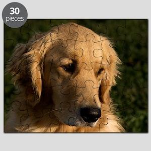 (12) golden retriever head shot Puzzle