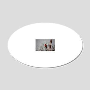 Cardinal 20x12 Oval Wall Decal