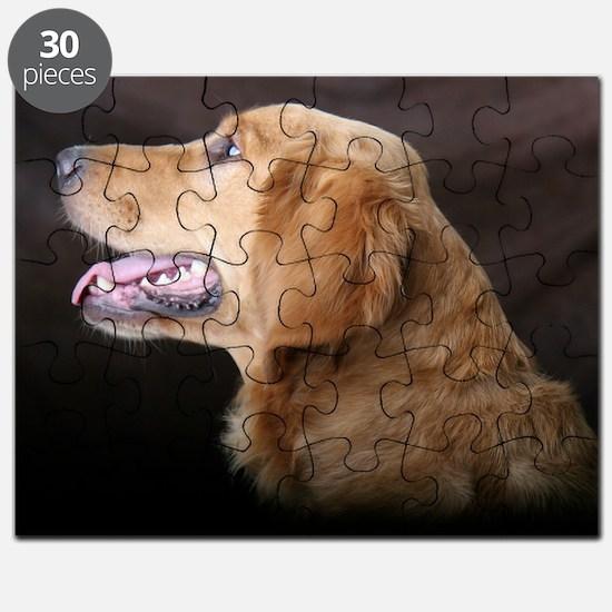 Linus hat Puzzle
