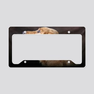 Linus hat License Plate Holder