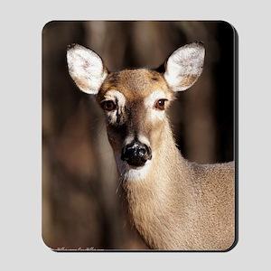 Whitetail Deer Doe Mousepad