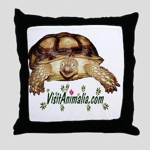 3-Sahara Throw Pillow