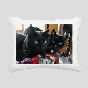 Q1 2010 Boy Kitties 002 Rectangular Canvas Pillow