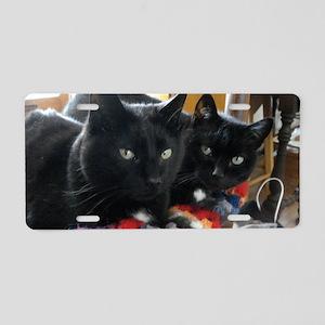Q1 2010 Boy Kitties 002 Aluminum License Plate