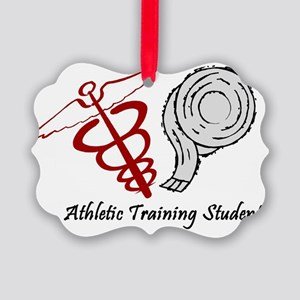 Athletic Training Student Picture Ornament