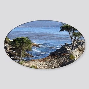 2300x1800TitledCypress Sticker (Oval)
