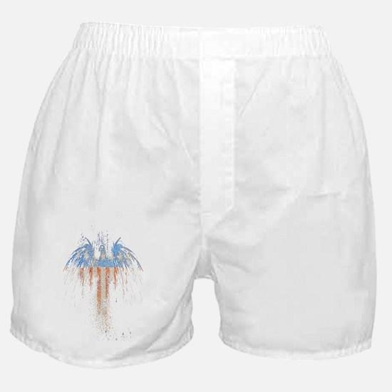 PATRIOTIC EAGLE 73 SLIDER TRANS TRANS Boxer Shorts