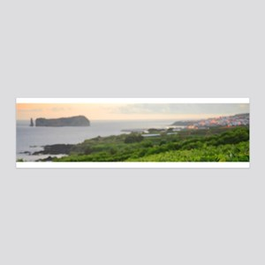 Islet and vineyards Wall Decal