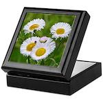 Wild Daisy Keepsake Box