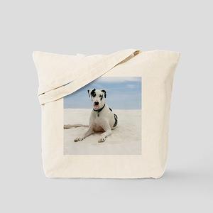 GD beach calendar Tote Bag