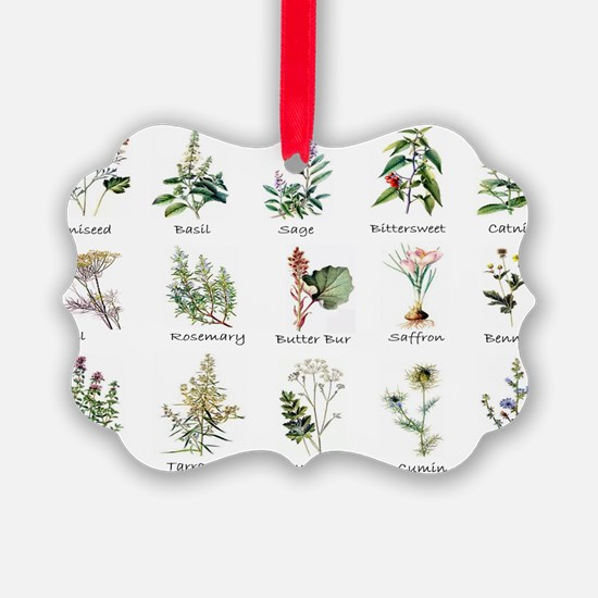 Herbs and Spices Illustrated Ornament