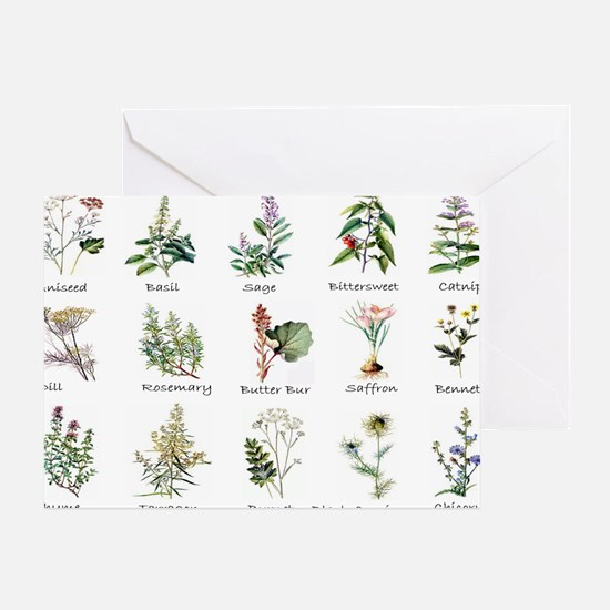 Herbs and Spices Illustrated Greeting Card