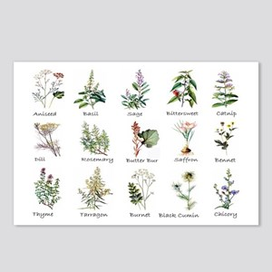 Herbs and Spices Illustra Postcards (Package of 8)