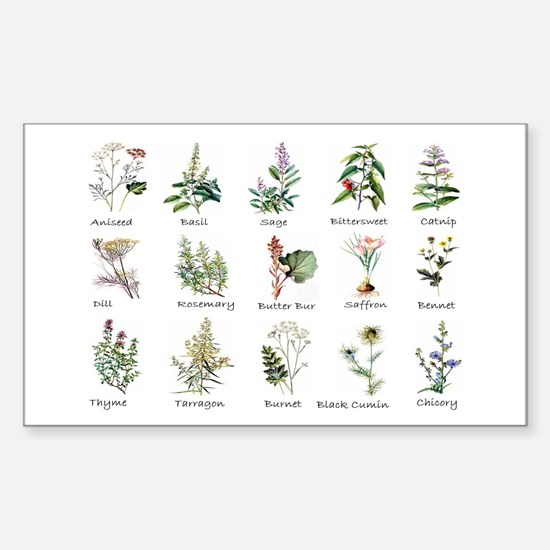 Herbs and Spices Illustrated Sticker (Rectangle)