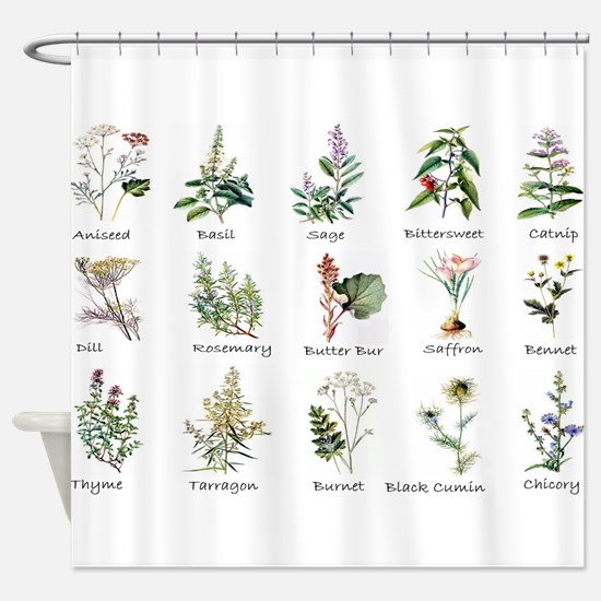 Herbs and Spices Illustrated Shower Curtain